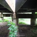 oskar_most-70-leta_08-1